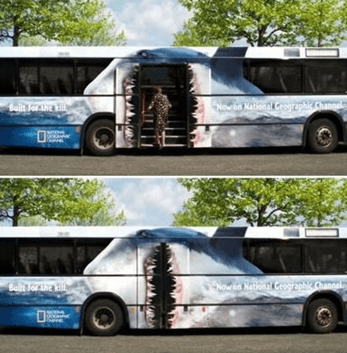 National Geographic Shark Bus